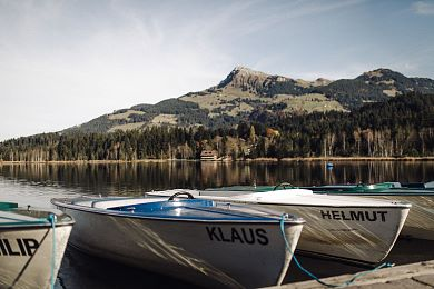 Hiking, swimming or boating in front of Tyrol's fantastic mountain scenery